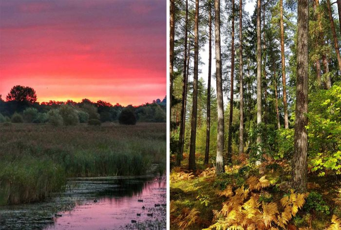 Best Photos Sent To Us This Week (26 September 2021)