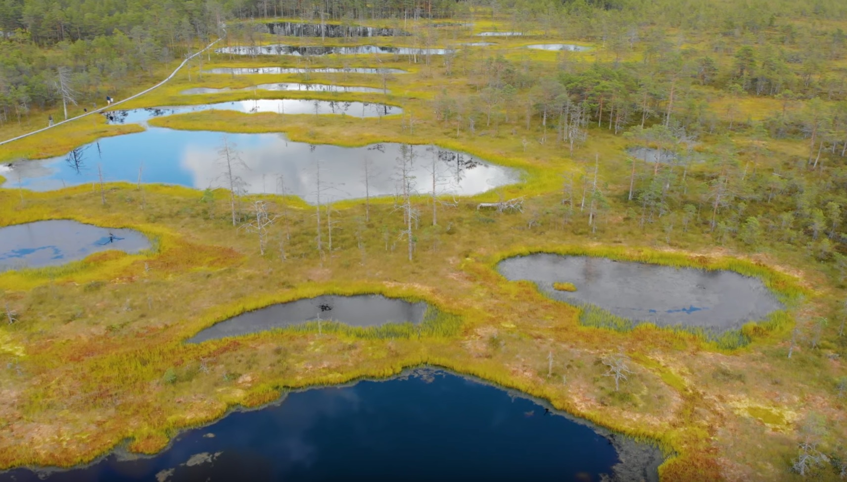 Estonian Nature From Above