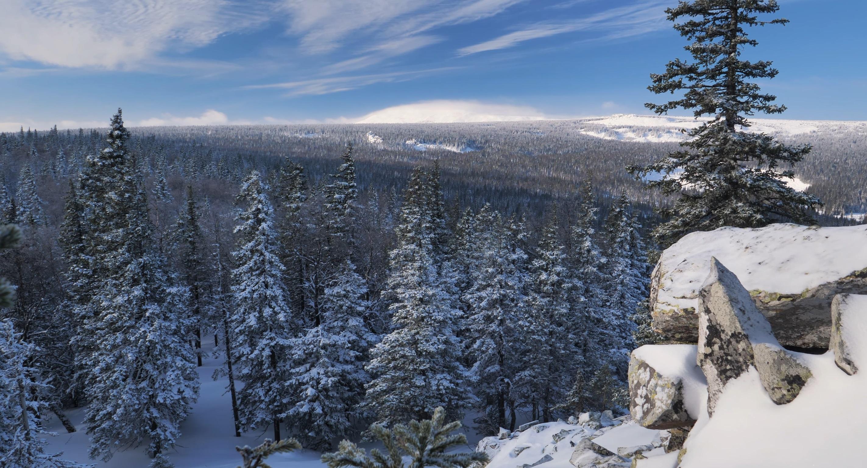 Beauty Of Winter