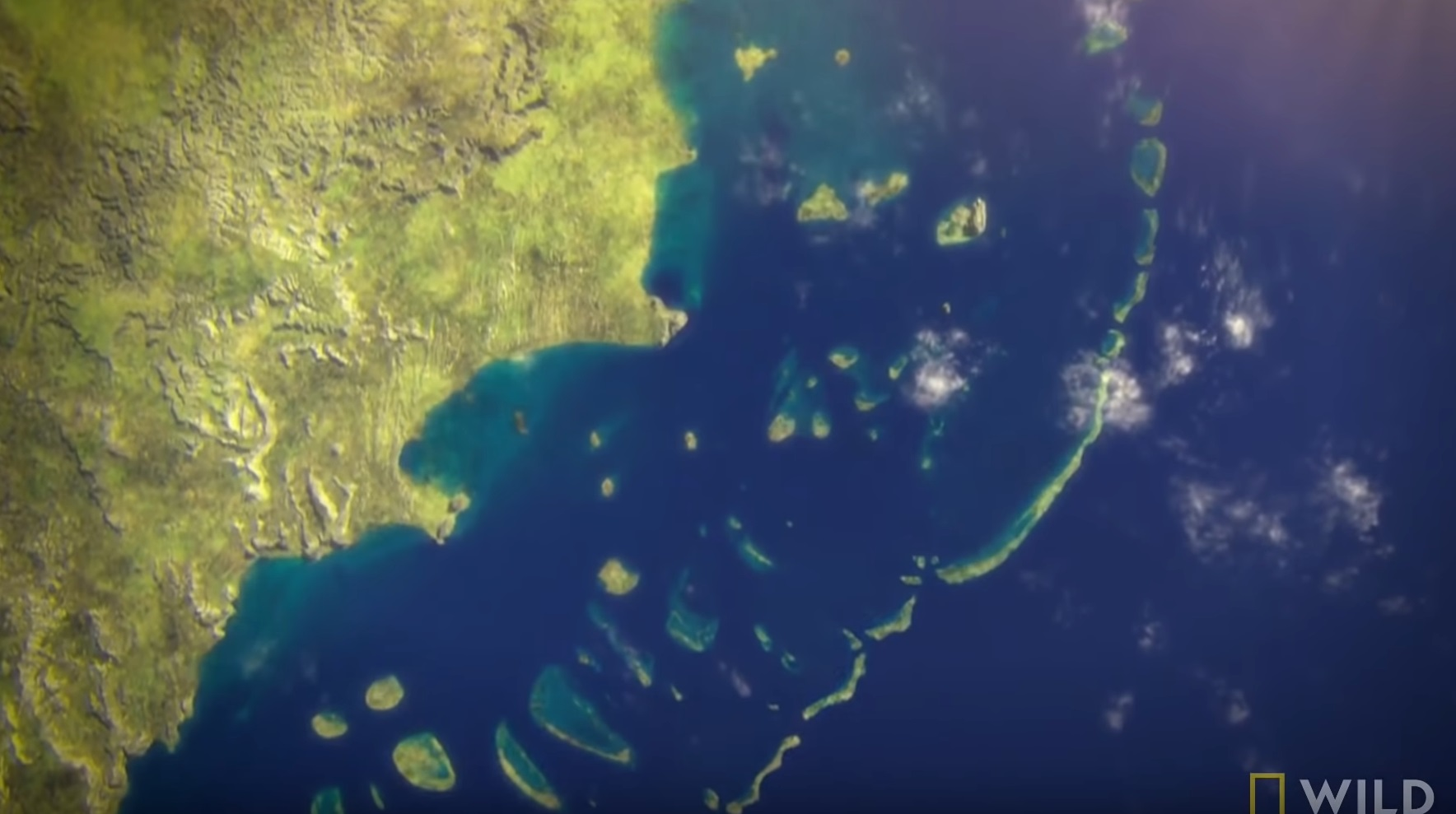 How The Great Barrier Reef Formed