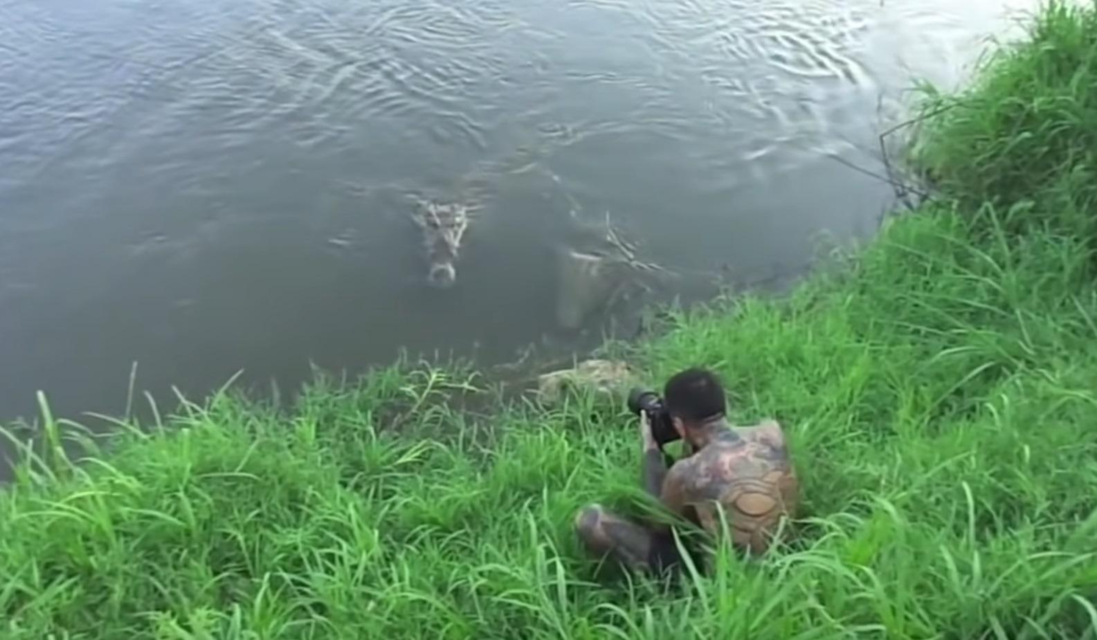 Photographer Gets Too Close To Crocodiles